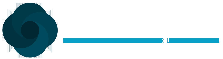 Virtual Biznest